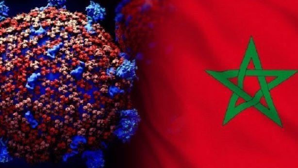 corona Maroc